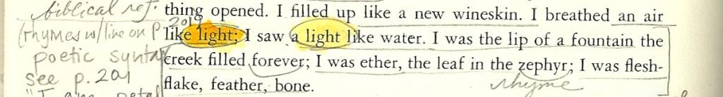 pilgrim page 32