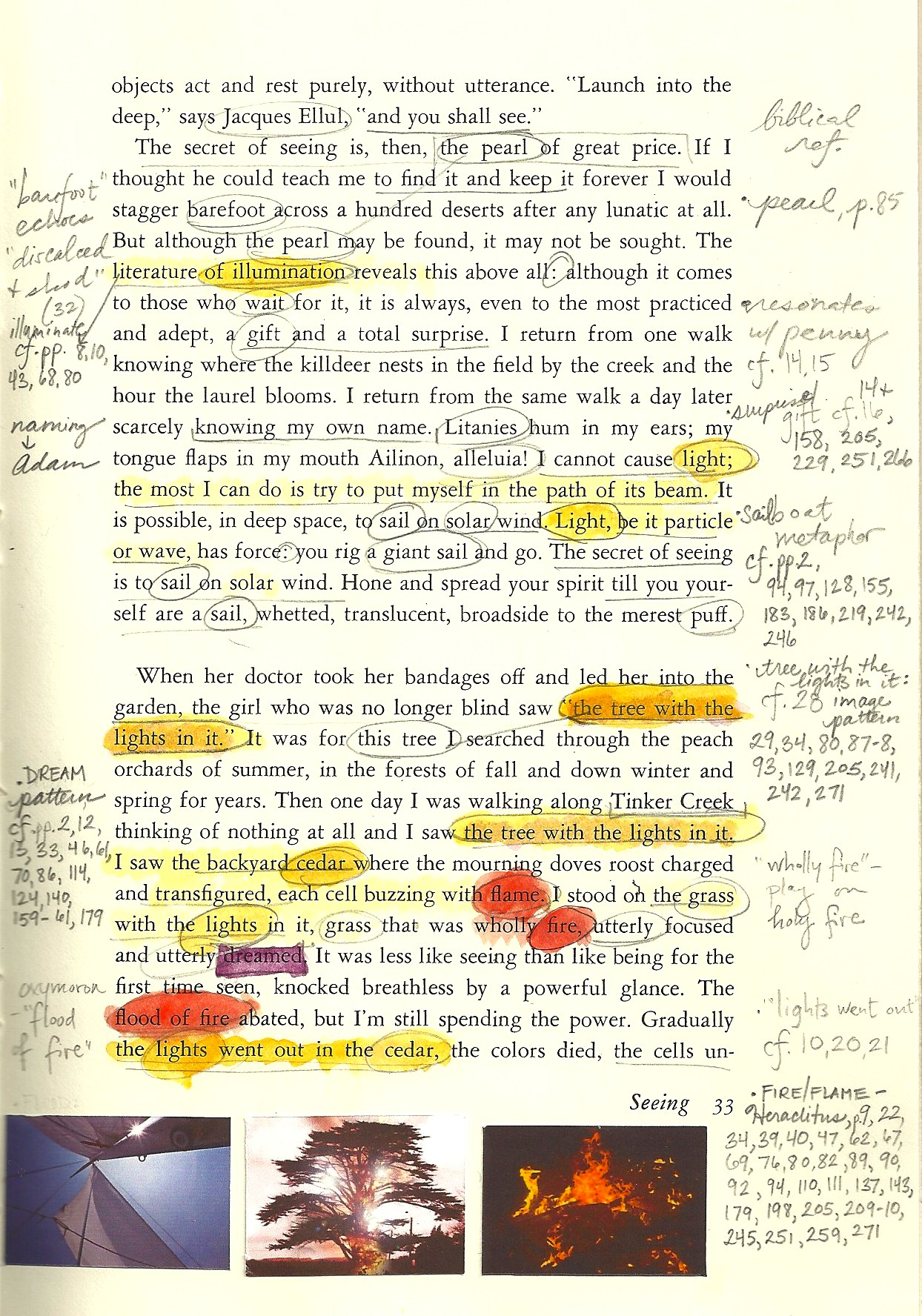 annie dillard seeing summary essay This is the life by annie dillard from the fall issue of image: a journal of the arts and religion, published by the center for religious humanism at seattle pacific university dillard's most recent book is for the time being any culture tells you how to live your one and only life: to wit as everyone else does probably.
