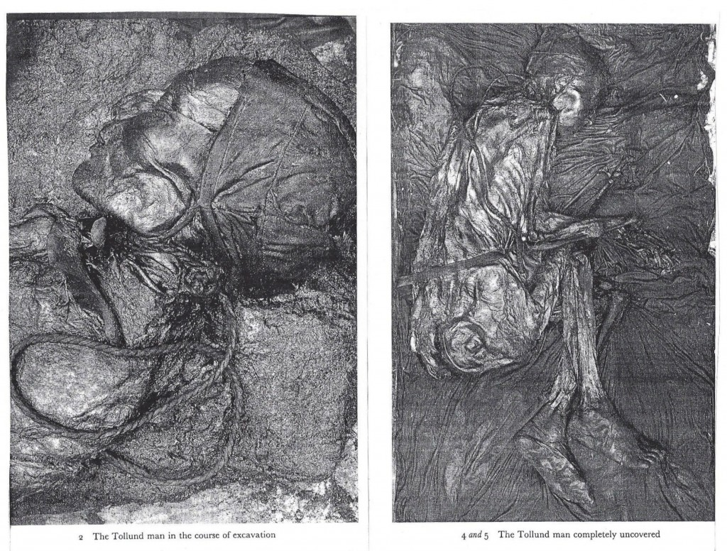essay on the tollund man Article analysis tollund man  i can find the relevant papers for you and can send you some of my own work on bog bodies (or you can download them from my researchgate page.