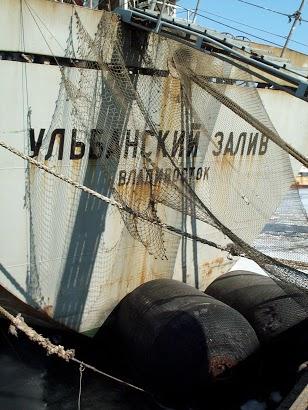 10 UlbanZaliv_0249
