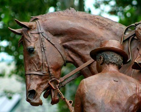 via Horseguru